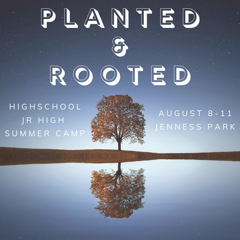 Planted & Rooted (1)